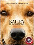 Bilder : Bailey - Ein Freund fürs Leben Trailer DF