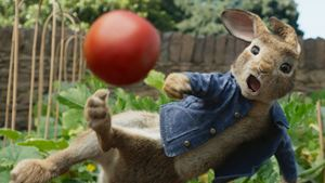 """Vierbeiner auf Abwegen: Im ersten Trailer zu """"Peter Hase 2"""" steht tierischer Ärger ins Haus"""