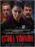 Qanli Yanvar