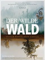 Der wilde Wald - Natur Natur sein lassen