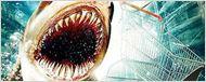 """Neuer Spielplatz für die Meerestiere: Erster deutscher Trailer zu """"""""Bait 3D - Haie im Supermarkt"""""""