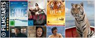 Die FILMSTARTS-DVD-Tipps (21. bis 27. April 2013)