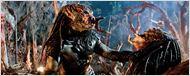 """""""The Predator"""": Shane Black spricht über Rückkehr von Arnold Schwarzenegger und Handlungszeit des Sci-Fi-Sequels"""