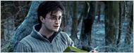 Wohnen in Godric's Hollow: Das Haus von Harry Potters Eltern steht zum Verkauf