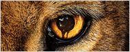 """Ende der Tierrevolution: """"Zoo"""" wird nach der 3. Staffel abgesetzt"""