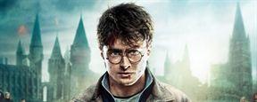 "Einblicke in den zauberhaften Themenpark ""Wizarding World of Harry Potter"""