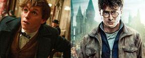 """Nach """"Fuck You""""-Diss: """"Phantastische Tierwesen""""-Star Eddie Redmayne reagiert auf Daniel Radcliffes """"Beleidigung"""""""