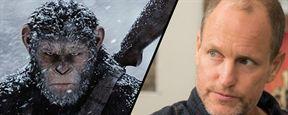 """So ein Affentheater: Woody Harrelson durfte in """"Planet der Affen 3: Survival"""" kein intelligentes Urwaldtierchen spielen"""