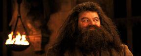 """Er sprach Hagrid in """"Harry Potter"""" und Gol D. Roger in """"One Piece"""": Synchronsprecher Hartmut Neugebauer verstorben"""