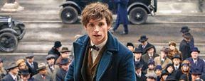 """""""Phantastische Tierwesen 2"""": Erstes Bild befeuert brandheiße """"Harry Potter""""-Fantheorie"""