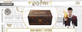 """Ein Weihnachtswunder: Die """"Harry Potter""""-Wootbox!"""