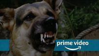 Ungeschnitten bei Amazon Prime Video: Ein Klassiker, bei dem im Kino noch mehr als 10 (!) Minuten gefehlt haben