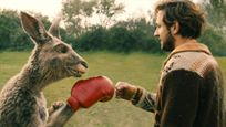 """Kino-Comeback """"Die Känguru-Chroniken Reloaded"""": Welche Szene ist in 3D?"""