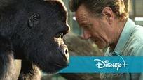 """Disney+ statt Kino: Deutscher Trailer zum tierischen Abenteuer """"Der einzig wahre Ivan"""" mit Mega-Cast"""