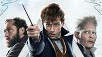 """Ist nach """"Phantastische Tierwesen 3"""" Schluss? Warner baut angeblich Notbremse für enttäuschendes """"Potter""""-Spin-off ein"""