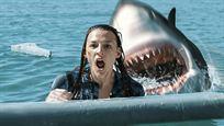 """Gefräßige Haie machen Jagd auf Vlogger: Deutscher Trailer zu """"Surrounded - Tödliche Bucht"""""""