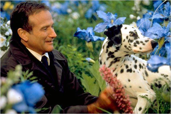 Robin Williams Hinter Dem Horizont