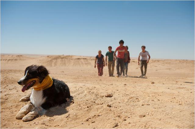 Bild zu Omid Memar zum der Film Fünf Freunde 4 - Bild 3